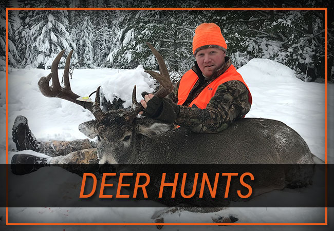 Deer Hunts with Rainy Lake Outfitters Inc.
