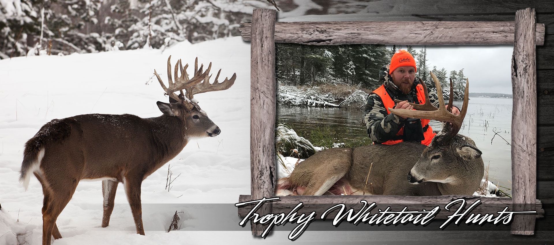 ontario-whitetail-deer-hunting.jpg